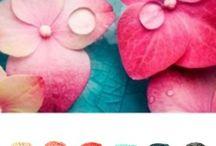 kleuren combi's