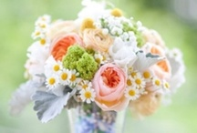 spring colors wedding / by Ava Phillips