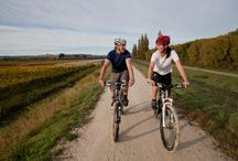 Hawkes Bay Cycling - HB Trails / All types of cycling in Hawkes Bay. Road riding, mountain biking, pathway riding HB Trails