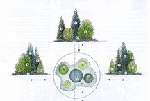 Ogród kompozycje rabat