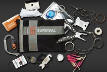 Gadgets and survival