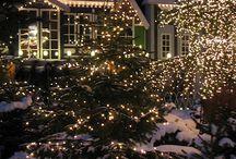 Winter wonderland & decoration