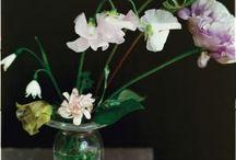Flowers of Japan / by Linda Altland