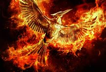 Mockingjay Part 2 Official Images and Posters
