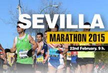 Maratón de Sevilla 22 de Febrero de 2015