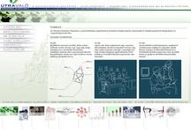 Web Design, Útravaló, 2004