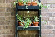 Potter, hyller, hengeplanter & kasser / Potter, drivhus, ideer