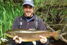 Trout Fishing in Ireland / Trout fishing in Ireland