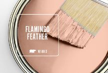 flamingo feather