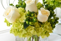 Flower creations  / by Kimberlee Smith