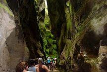 Oz Trip 2014 / Sydney + Queensland Coast / by William Preach