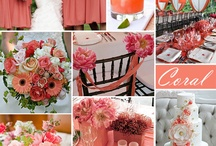 Weddings - Shades of Coral / Color me Coral