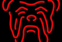 Red Dog Neon Beer Signs