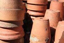 Ideas for terra cotta pots  / by Glenda Buckles