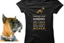 Animal Rescue | T-Shirts