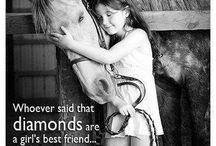 Końskie cytaty