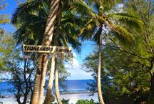 Cook Islands Me / Like Hawaii 100 years ago, Cook Islands in the South Pacific is rustic chic.