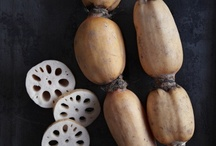 All About Roots--Lotus Root / by Diane Morgan