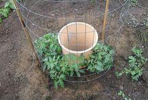 Home Gardening/Farming