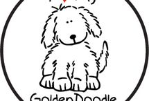 Goldendoodles / by Liz Powell