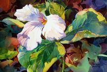 Blomster illustrationer