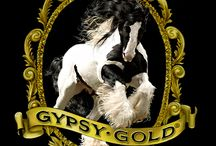 Trip Advisor / Gypsy Gold horse farm is a place to discover the Gypsy Vanner horse, and learn about the colorful and diverse Brittish Gypsies who envisioned this magical breed of horse.