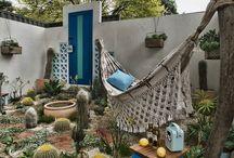 Little Mexico Garden