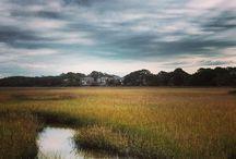Seabrook Island Landscape