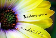 nice wishes