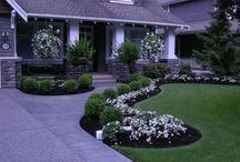 Trädgårdsdesign Framsida