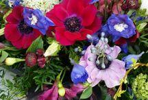Blumen / Blumen Blumendekoration interior