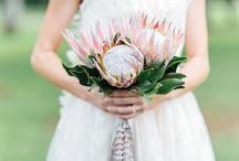 Amber + Josh's Wedding Inspiration!