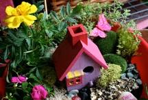 Fairy Garden! / by Tatiana L Canchola