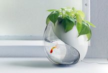 Fish/plant pot