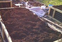 new front yard garden beds