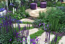 patio tuinen