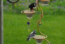 Mangeoires à oiseaux.