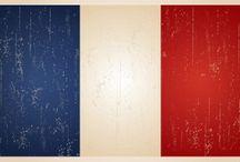 Français --- Leçons