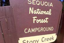 Campings USA / De campings die we mogelijk kunnen bezoeken en reserveren