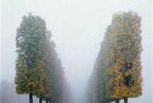 Linku2 Beautiful Paris