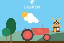 Viaggi di Pasta / La Past Barilla dal campo alla tavola