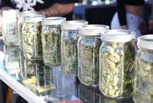 2016 U.S. Cannabis Cup and Carnival