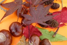 Autumn craft ideas for kids / Use autumn leaves & other produce from the natural world such as acorns to make things for children