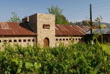 Your International Wine Cellar / A collection of International wines and wineries featured by The California Wine Club's International Wine Club Series.  Wines and winemakers from France, Germany, Australia, Argentina and South Africa to name a few. / by The California Wine Club