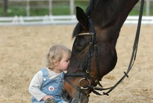 Horses and children