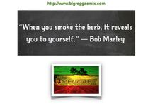 """Bob Marley Marijuana Quotes / """"Bob was a revolutionary. He was a person who wanted social justice in a real sense, in a real physical sense,"""" Ziggy Marley said. """"There's a lot more to it than the whole, 'Bob Marley, love and peace and smoke weed.' That's not it at all. No. It's deep! It's all right for some people to pass it off as that. But it's much deeper. And the message is always relevant. 'Get up, stand up for your rights?' 'One love, one heart, let's get together and feel all right?' It's all still very relevant."""""""