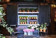 flower shop dispay