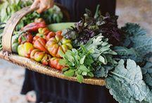 Farmer's Market/NYC Love  / NYC Green Market & Street/Park