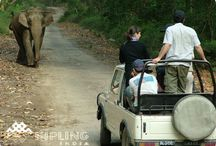 gujarat tour packages / Four wheel Drive India is best Four wheel Drive India is best and leading travel company which provide gujarat tour packages at affordable rates. For more query Call +91 9829248899