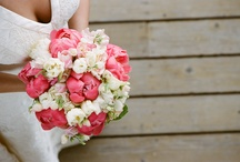 Wedding Inspiration / I have seven friends getting married in 2010, let the inspiration begin....